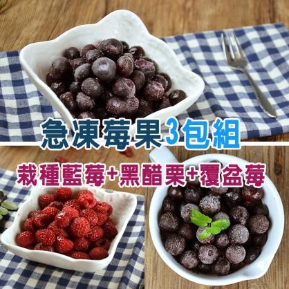 進口急凍莓果-3包組(栽種藍莓1公斤+黑醋栗1公斤+覆盆莓1公斤)
